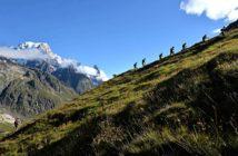 Les parcours des courses du North Face® Ultra-Trail du Mont-Blanc