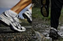 Comment bien préparer le passage du running au trail ?